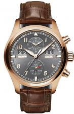 IWC / Pilot's Watches / IW379105